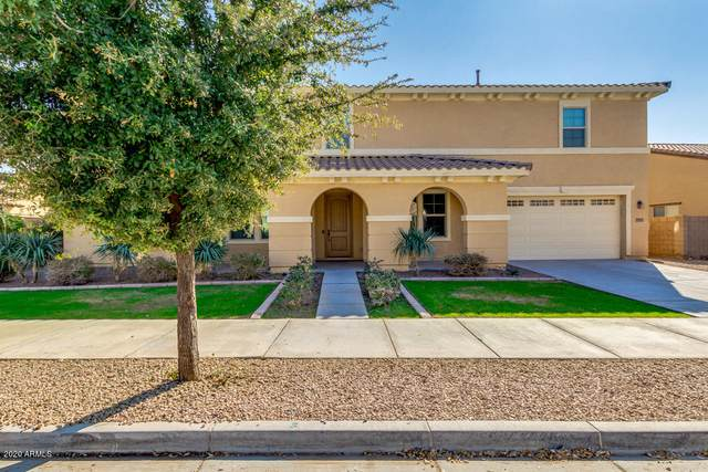 21271 E Waverly Drive, Queen Creek, AZ 85142 (MLS #6040124) :: The Everest Team at eXp Realty