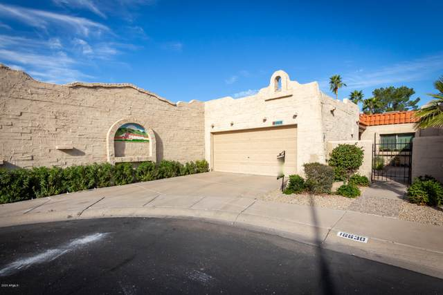 16630 N 30TH Avenue, Phoenix, AZ 85053 (MLS #6040153) :: Openshaw Real Estate Group in partnership with The Jesse Herfel Real Estate Group