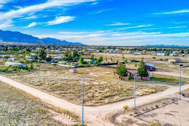 9741 E Ellis Way, Hereford, AZ 85615 (MLS #6040169) :: Kepple Real Estate Group