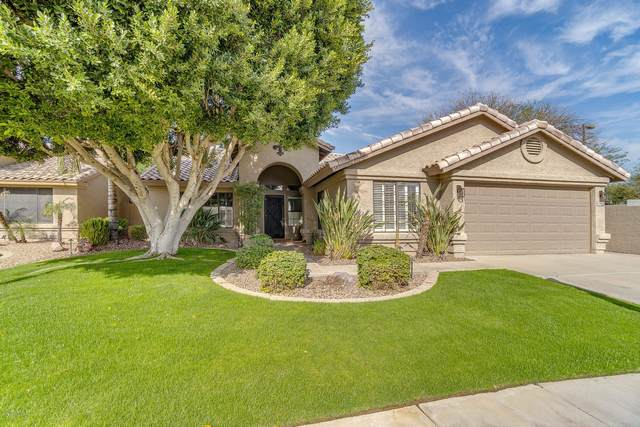 3040 S Rosemary Drive, Chandler, AZ 85248 (MLS #6040177) :: The Property Partners at eXp Realty