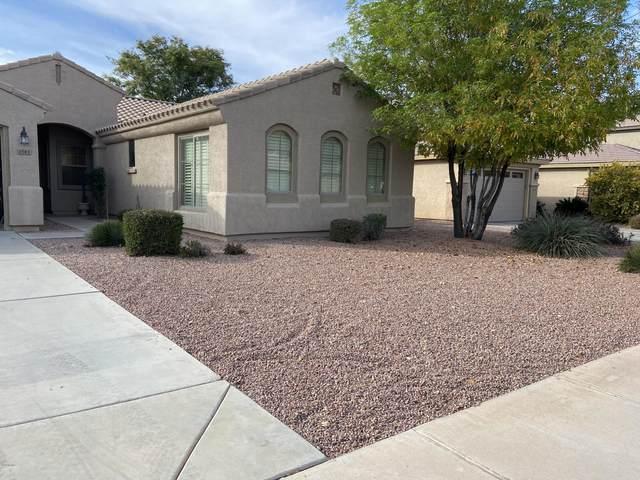 1541 E Lark Street, Gilbert, AZ 85297 (MLS #6040192) :: Brett Tanner Home Selling Team