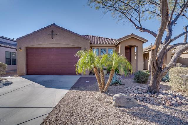 46101 W Holly Drive, Maricopa, AZ 85139 (MLS #6040274) :: Yost Realty Group at RE/MAX Casa Grande