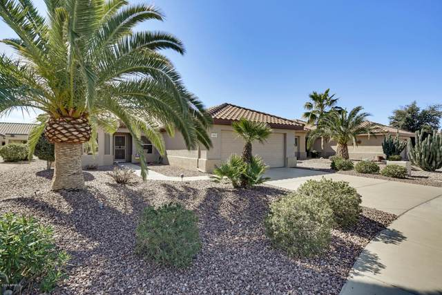 15687 W Cimarron Drive, Surprise, AZ 85374 (MLS #6040303) :: Revelation Real Estate