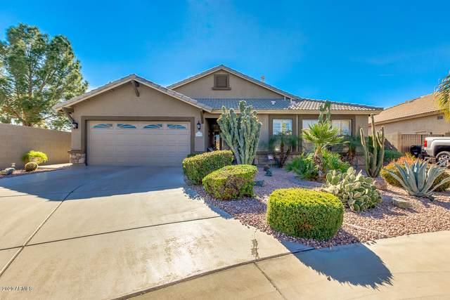 12715 W Verde Lane, Avondale, AZ 85392 (MLS #6040306) :: RE/MAX Desert Showcase