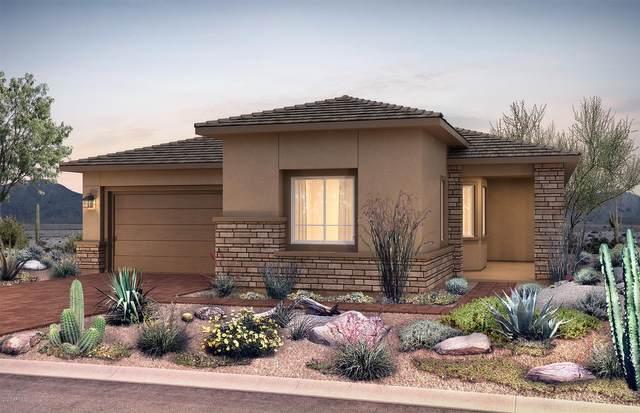 22308 N 28th Street, Phoenix, AZ 85050 (MLS #6040318) :: Lucido Agency