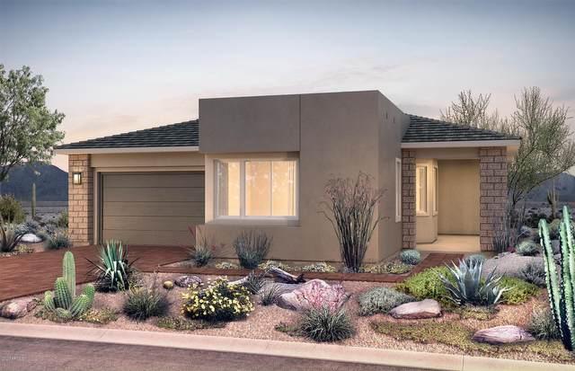 2841 E Pike Street, Phoenix, AZ 85050 (MLS #6040322) :: Lucido Agency