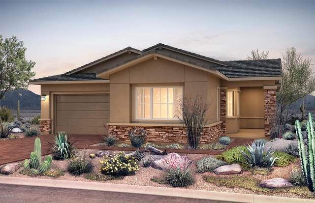22210 N 28th Street, Phoenix, AZ 85050 (MLS #6040325) :: Lucido Agency