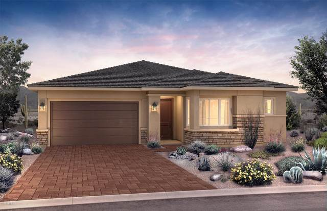 2854 E Pike Street, Phoenix, AZ 85050 (MLS #6040333) :: My Home Group