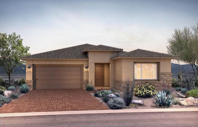 2831 E Donald Drive, Phoenix, AZ 85050 (MLS #6040340) :: My Home Group