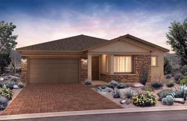 22324 N 28th Street, Phoenix, AZ 85050 (MLS #6040345) :: My Home Group