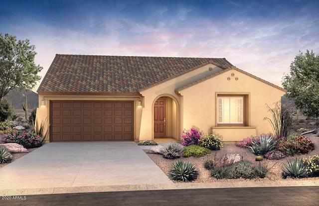505 S 198th Avenue, Buckeye, AZ 85326 (MLS #6040362) :: Conway Real Estate