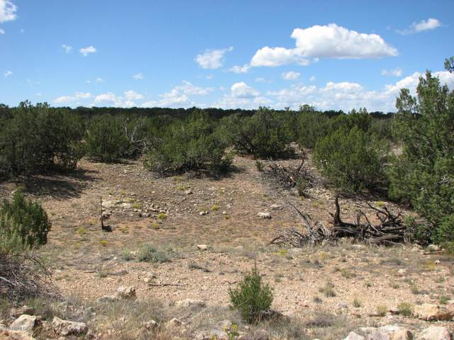 Sec 29 Cr, Heber, AZ 85928 (MLS #6040368) :: Devor Real Estate Associates