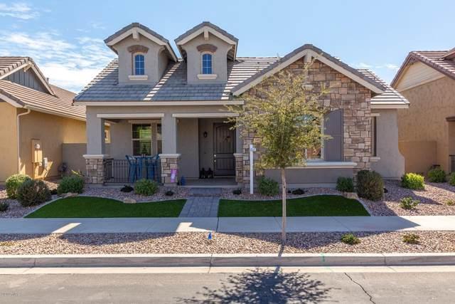 4489 E Skousen Street, Gilbert, AZ 85295 (MLS #6040401) :: Brett Tanner Home Selling Team