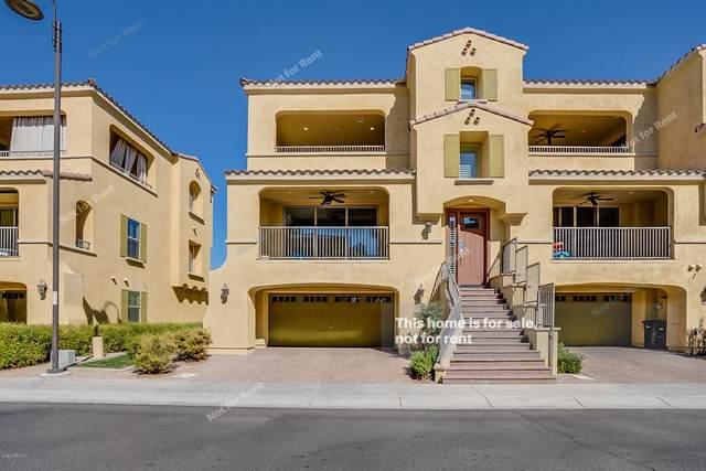 7102 W Ivanhoe Street, Chandler, AZ 85226 (MLS #6040411) :: The W Group