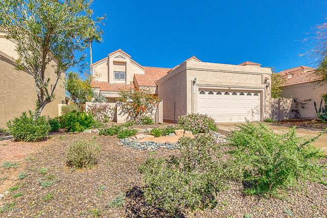 3960 E White Aster Street, Phoenix, AZ 85044 (MLS #6040416) :: neXGen Real Estate