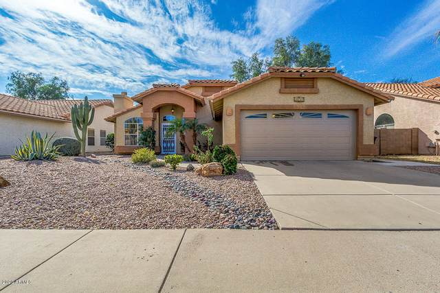 1241 W Butler Drive, Chandler, AZ 85224 (MLS #6040437) :: Lifestyle Partners Team