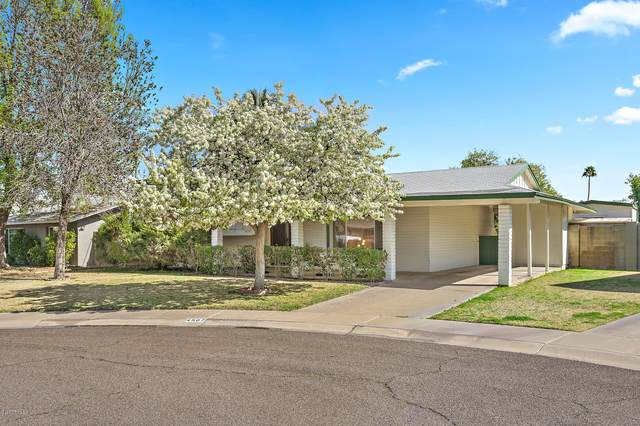 4507 S Elm Street, Tempe, AZ 85282 (MLS #6040444) :: The Results Group