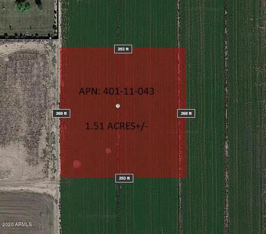 10602 S 297th Avenue, Buckeye, AZ 85326 (MLS #6040480) :: Brett Tanner Home Selling Team