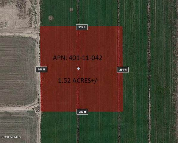 10702 S 297th Avenue, Buckeye, AZ 85326 (MLS #6040482) :: Brett Tanner Home Selling Team