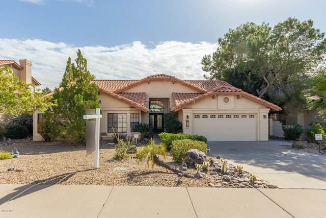 1039 E Forest Hills Drive ---->, Phoenix, AZ 85022 (MLS #6040501) :: Arizona Home Group