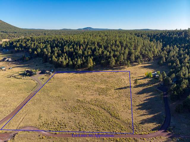 9635 W Antoinette Way, Flagstaff, AZ 86001 (MLS #6040505) :: Conway Real Estate