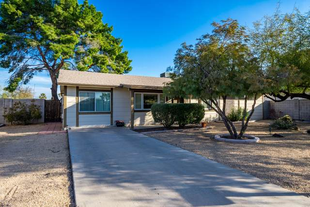 2138 E Monte Cristo Avenue, Phoenix, AZ 85022 (MLS #6040506) :: Revelation Real Estate