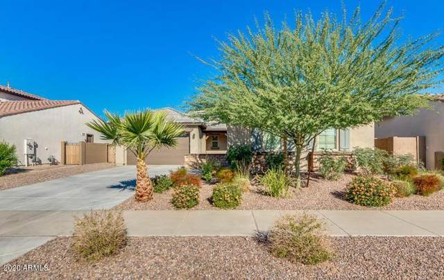 19686 E Peartree Lane, Queen Creek, AZ 85142 (MLS #6040519) :: Lux Home Group at  Keller Williams Realty Phoenix
