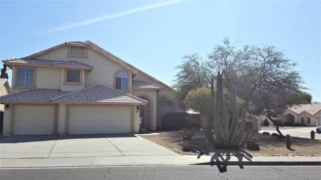 4025 E San Angelo Avenue, Gilbert, AZ 85234 (MLS #6040554) :: Santizo Realty Group