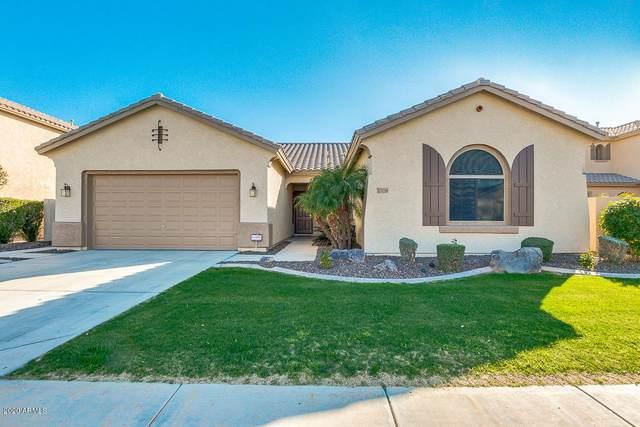 13259 W Mulberry Drive, Litchfield Park, AZ 85340 (MLS #6040571) :: Sheli Stoddart Team | M.A.Z. Realty Professionals