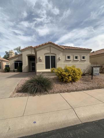 9627 N 118th Way, Scottsdale, AZ 85259 (MLS #6040585) :: Nate Martinez Team