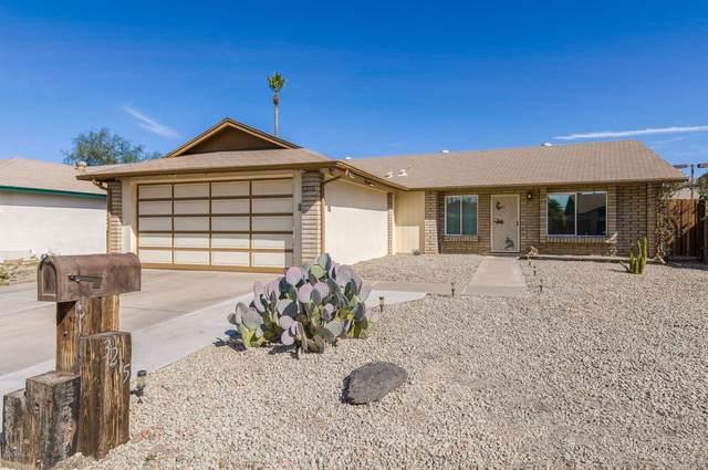 3215 N Salida Del Sol Street, Chandler, AZ 85224 (MLS #6040593) :: The Property Partners at eXp Realty