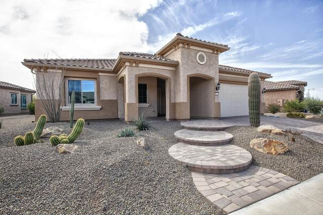 26417 W Cat Balue Drive W, Buckeye, AZ 85396 (MLS #6040616) :: Sheli Stoddart Team | M.A.Z. Realty Professionals