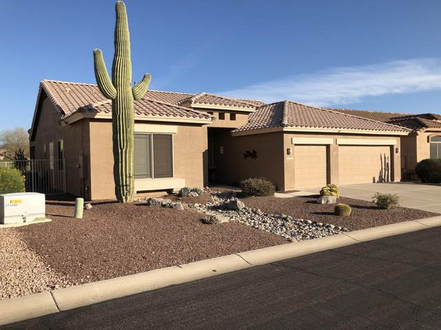 5253 S Red Yucca Lane, Gold Canyon, AZ 85118 (MLS #6040677) :: Yost Realty Group at RE/MAX Casa Grande