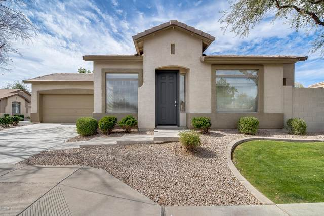 1254 S Soho Lane, Chandler, AZ 85286 (MLS #6040723) :: The Results Group