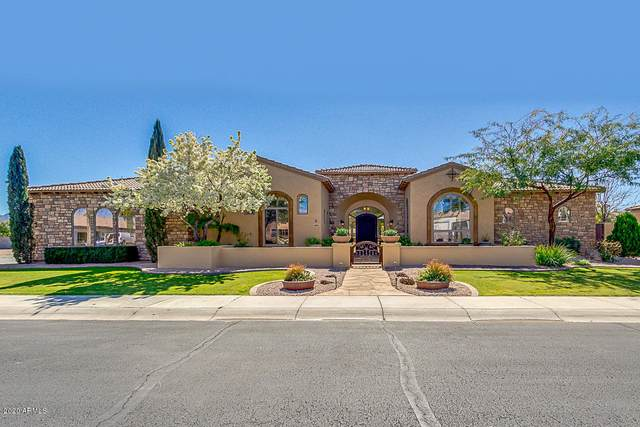 4181 E Aquarius Place, Chandler, AZ 85249 (MLS #6040729) :: The Results Group