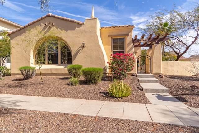 13493 N 153rd Avenue, Surprise, AZ 85379 (MLS #6040732) :: Sheli Stoddart Team | M.A.Z. Realty Professionals