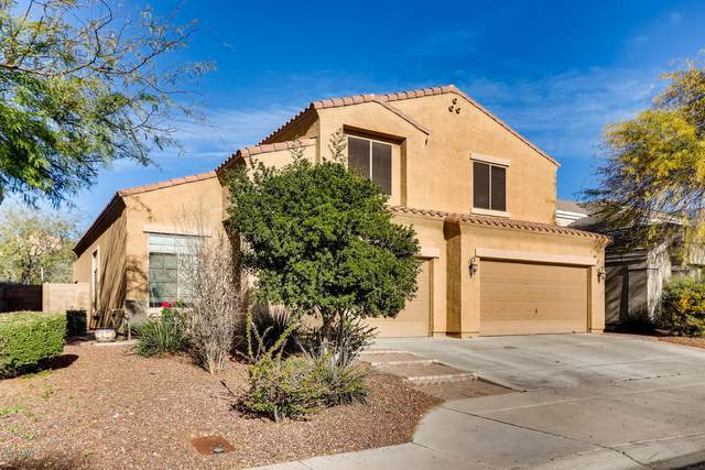 23518 N 118TH Lane, Sun City, AZ 85373 (MLS #6040745) :: The Property Partners at eXp Realty