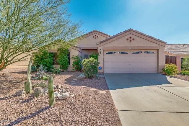 11173 W Manzanita Drive, Peoria, AZ 85345 (MLS #6040757) :: The Garcia Group