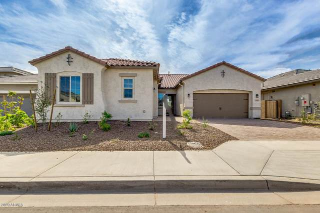 11609 W Andrew Lane, Peoria, AZ 85383 (MLS #6040797) :: The Property Partners at eXp Realty