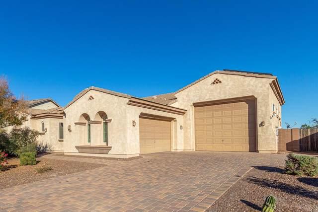 4335 N 179TH Drive, Goodyear, AZ 85395 (MLS #6040798) :: RE/MAX Desert Showcase
