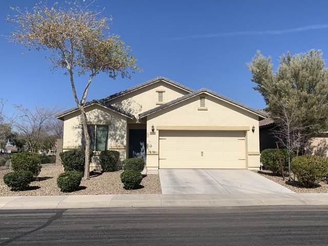 41400 W Lucera Lane, Maricopa, AZ 85138 (MLS #6040835) :: Yost Realty Group at RE/MAX Casa Grande
