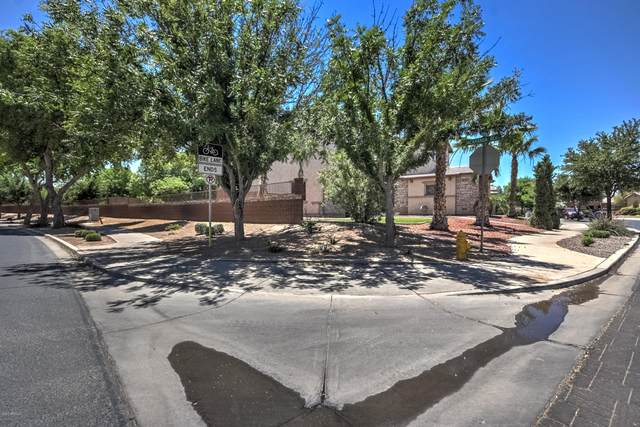21159 S 187TH Street, Queen Creek, AZ 85142 (MLS #6040848) :: The Everest Team at eXp Realty