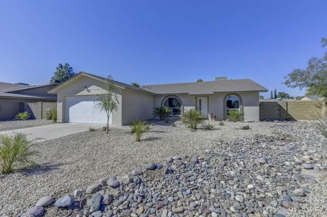 14836 N 59TH Street, Scottsdale, AZ 85254 (MLS #6040864) :: Russ Lyon Sotheby's International Realty