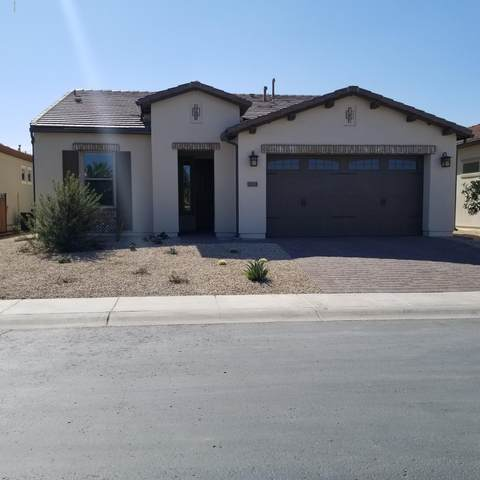 1235 E Artemis Trail, San Tan Valley, AZ 85140 (MLS #6040876) :: The Everest Team at eXp Realty