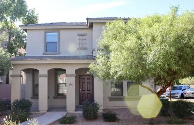 1908 E Loma Vista Street, Gilbert, AZ 85295 (MLS #6040916) :: The Laughton Team