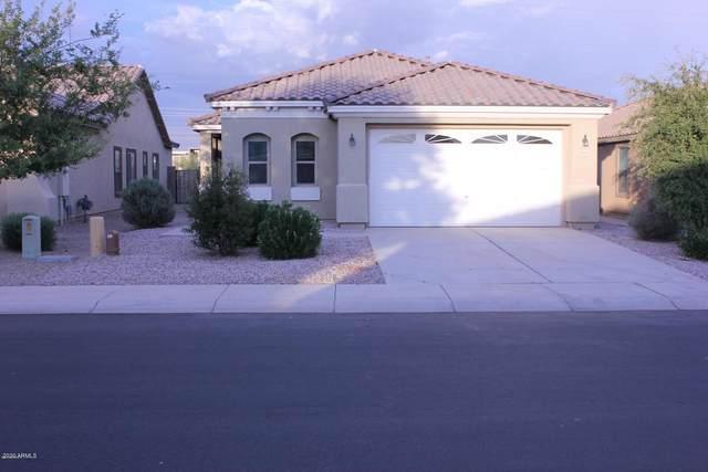 18315 N Celis Street, Maricopa, AZ 85138 (MLS #6040959) :: Brett Tanner Home Selling Team