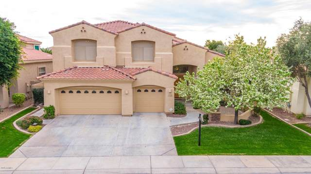 4402 S Wildflower Place, Chandler, AZ 85248 (MLS #6040983) :: Revelation Real Estate