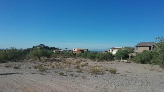 8125 E Rochelle Street, Mesa, AZ 85207 (MLS #6040993) :: Yost Realty Group at RE/MAX Casa Grande