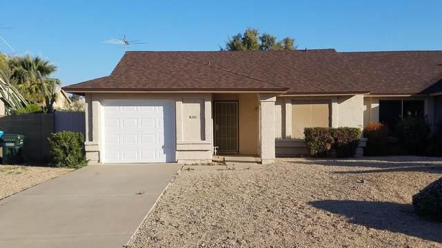 1910 E Grandview Drive, Phoenix, AZ 85022 (MLS #6041000) :: The Kenny Klaus Team