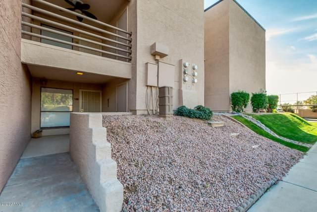 1340 N Recker Road #146, Mesa, AZ 85205 (MLS #6041001) :: Brett Tanner Home Selling Team